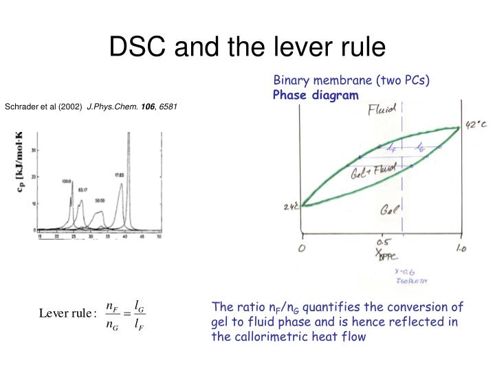 DSC and the lever rule