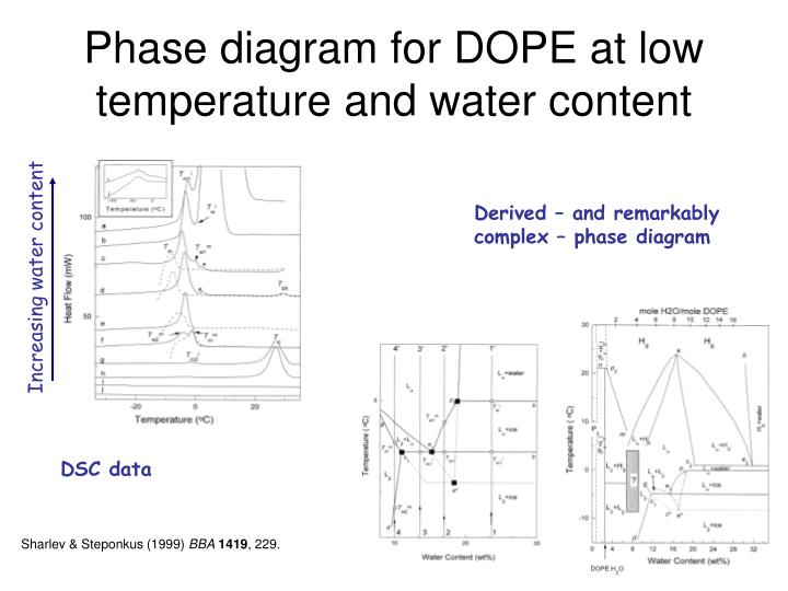 Phase diagram for DOPE at low temperature and water content