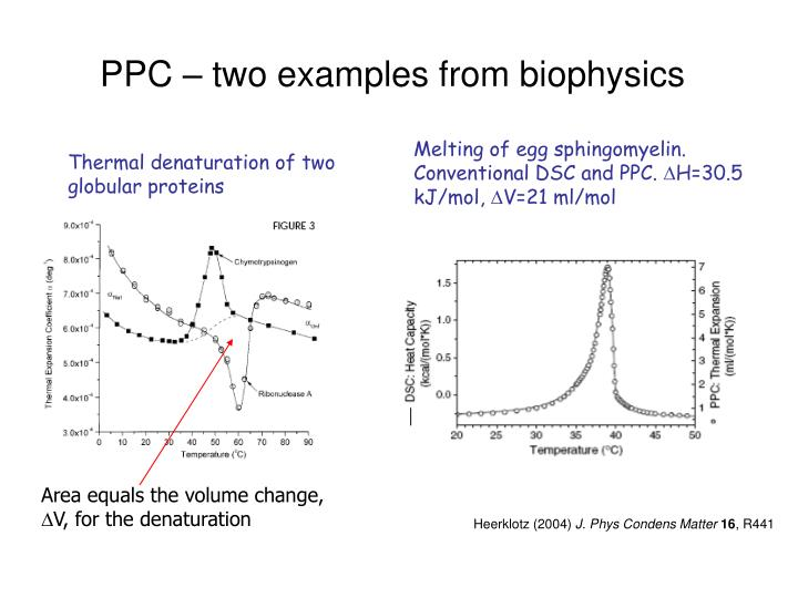 PPC – two examples from biophysics