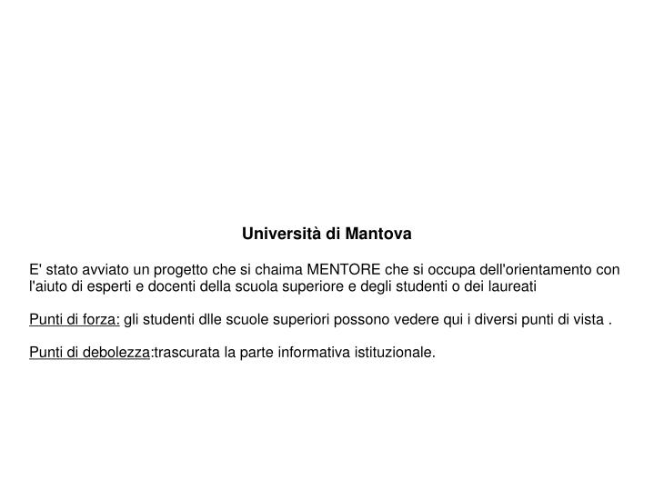 Università di Mantova