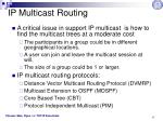 ip multicast routing