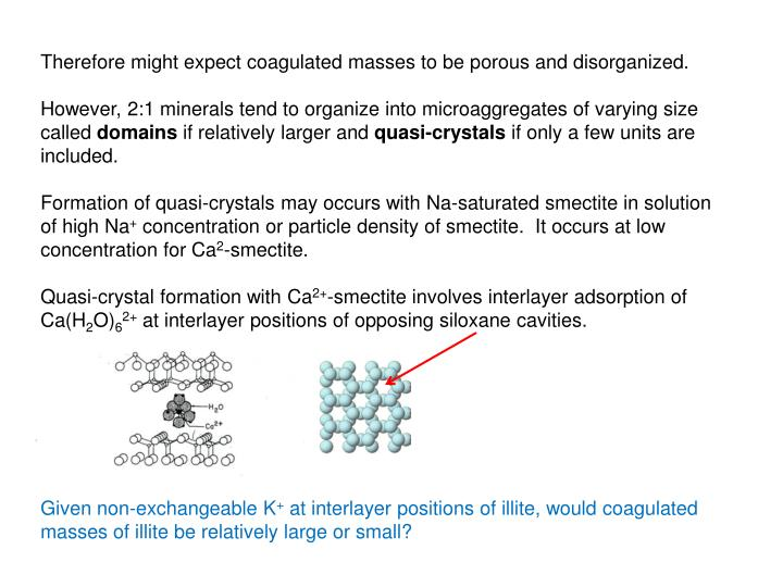 Therefore might expect coagulated masses to be porous and disorganized.