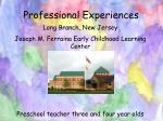 professional experiences