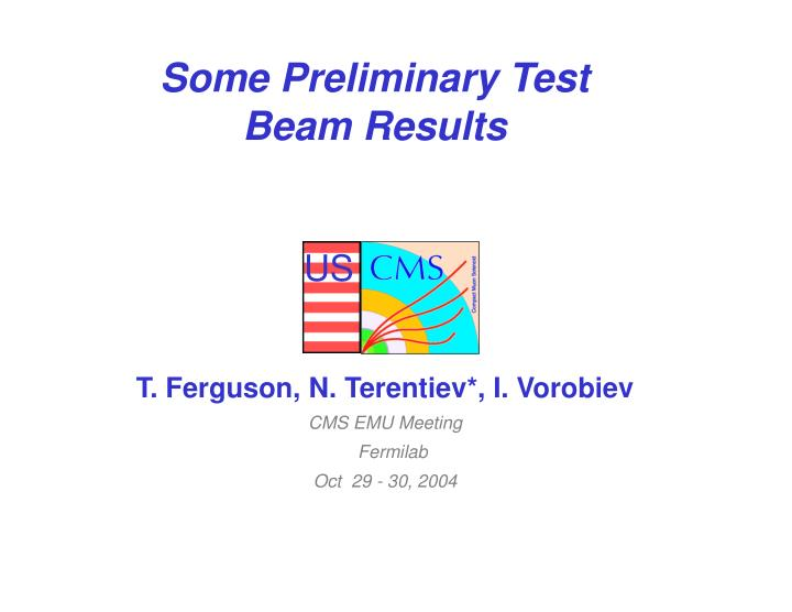 some preliminary test beam results n.