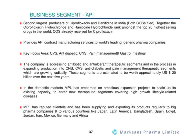 BUSINESS SEGMENT -