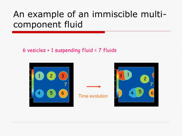 An example of an immiscible multi-component fluid