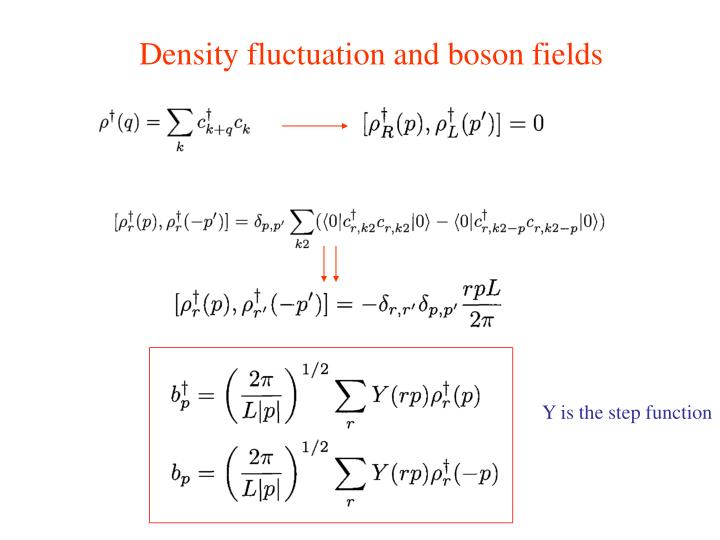Density fluctuation and boson fields