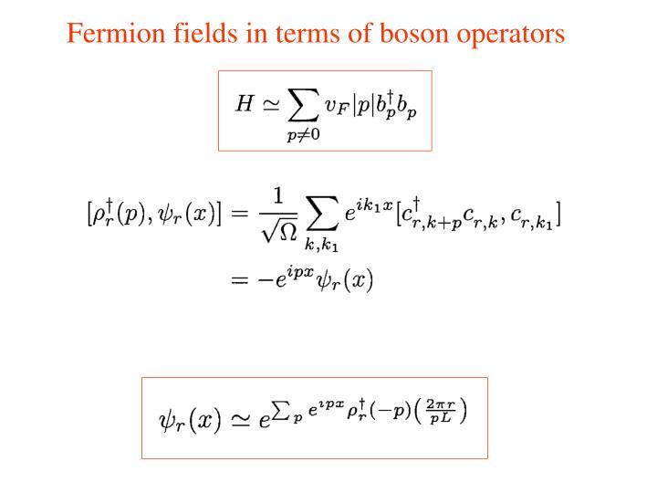 Fermion fields in terms of boson operators
