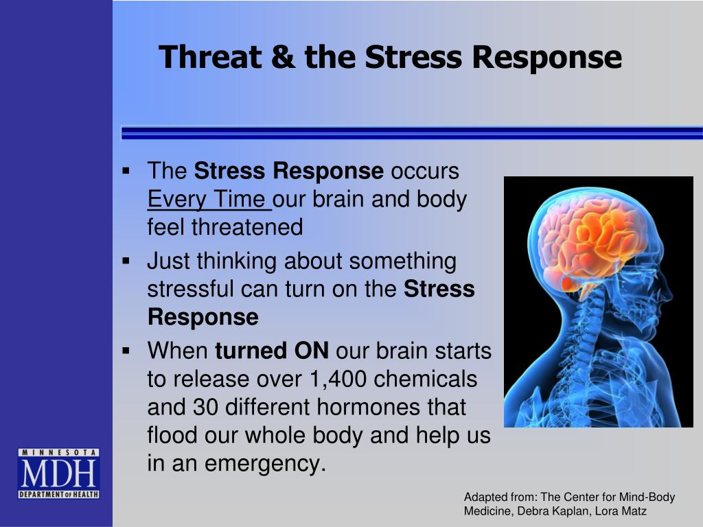 PPT - Psychological First Aid PowerPoint Presentation - ID ...