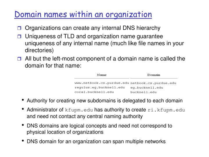 Domain names within an organization