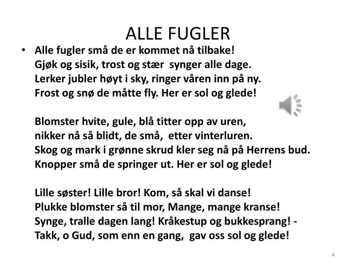 ALLE FUGLER