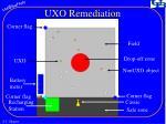 uxo remediation