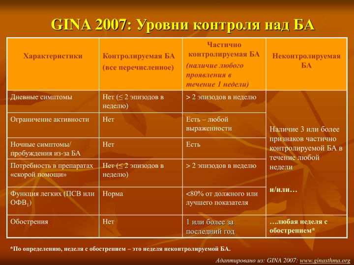 GINA 2007
