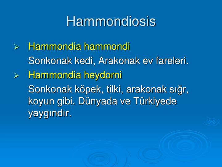 Hammondiosis