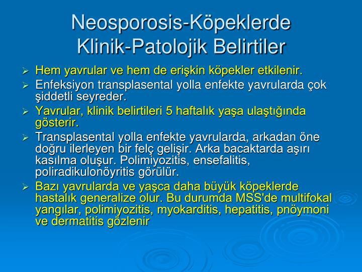 Neosporosis-Köpeklerde