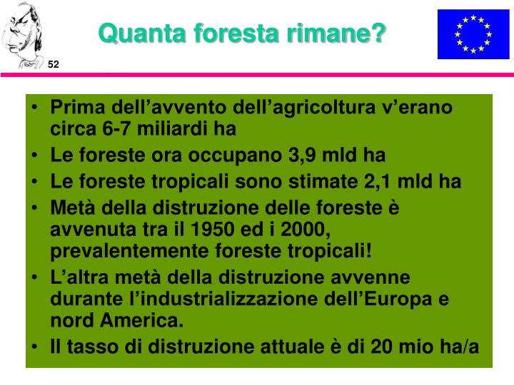 Quanta foresta rimane?