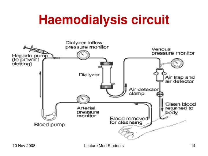 Haemodialysis circuit