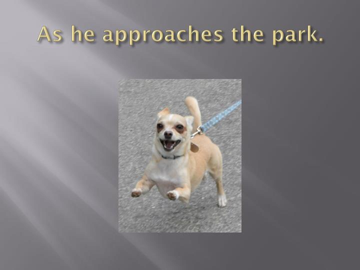 As he approaches the park.