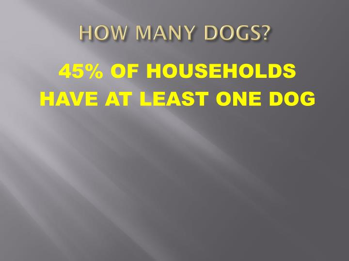 HOW MANY DOGS?