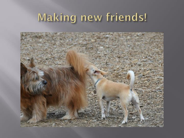 Making new friends!
