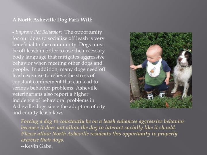 A North Asheville Dog Park Will: