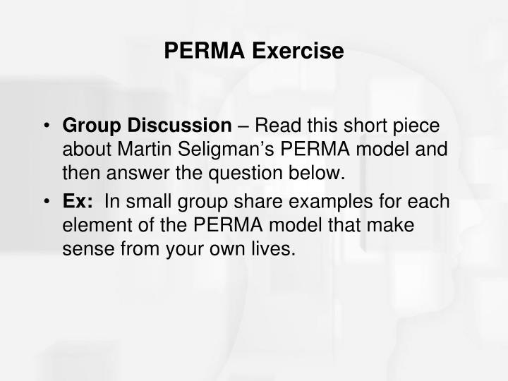 PERMA Exercise