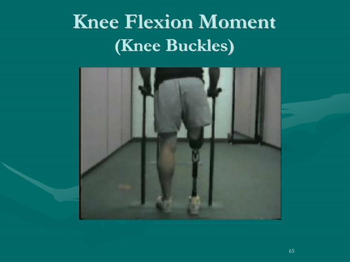 Knee Flexion Moment