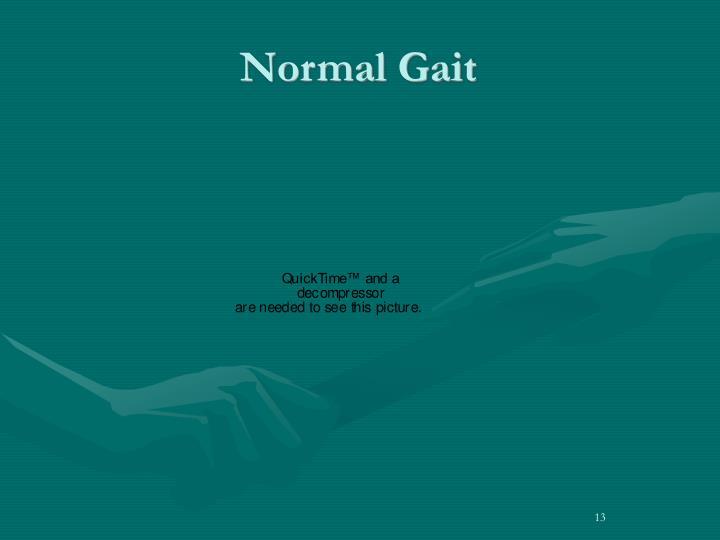 Normal Gait