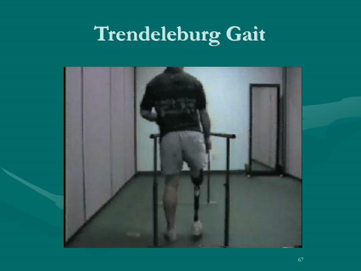 Trendeleburg Gait