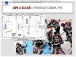 aplis dab hokeja laukums