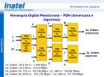 hierarquia digital plesi crona pdh americana e japonesa