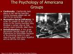 the psychology of americana groups