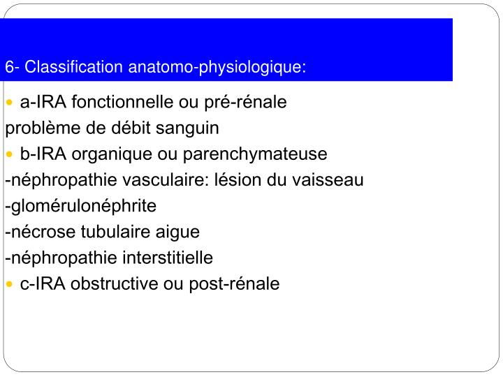 6- Classification anatomo-physiologique: