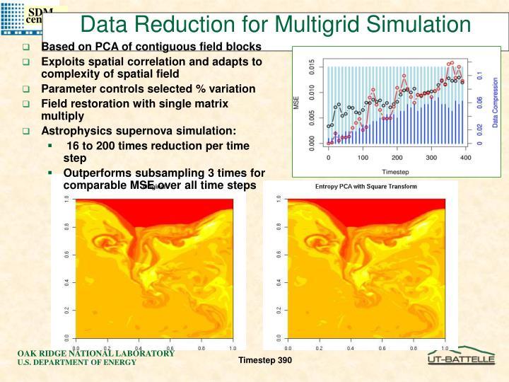 Data Reduction for Multigrid Simulation