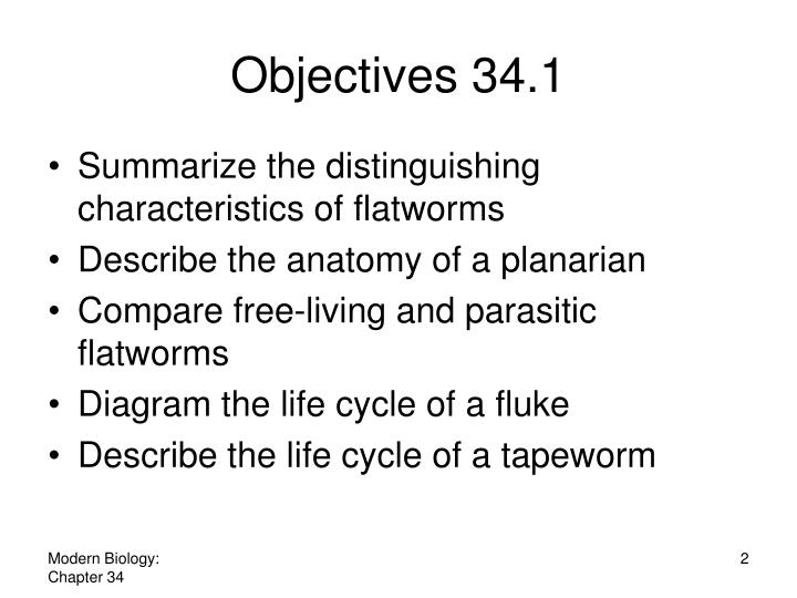 Ppt Flatworms Roundworms And Rotifers Powerpoint Presentation