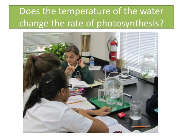 Does the temperature of the water change the rate of photosynthesis?