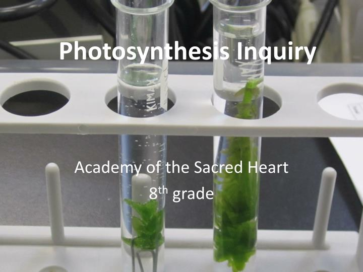 Photosynthesis inquir y