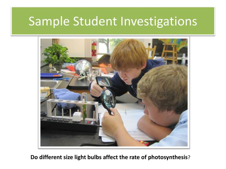 Sample Student Investigations