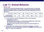 lab 11 animal behavior5