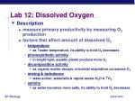 lab 12 dissolved oxygen2