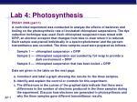 lab 4 photosynthesis4