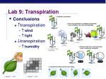 lab 9 transpiration3