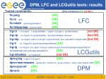 dpm lfc and lcgutils tests results