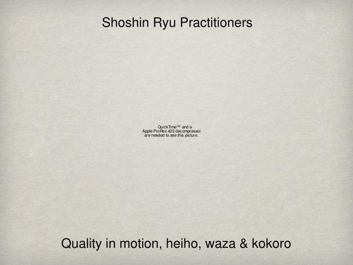 Shoshin Ryu Practitioners