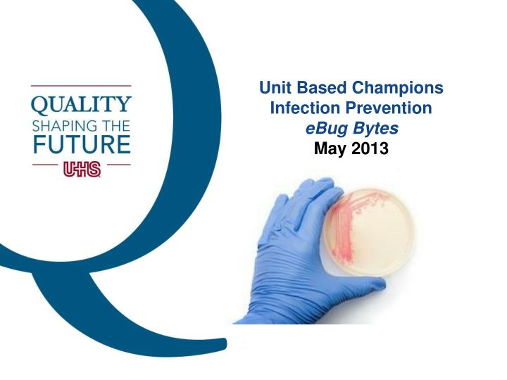 unit based champions infection prevention ebug bytes may 2013 n.