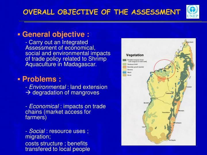 Overall objective of the assessment
