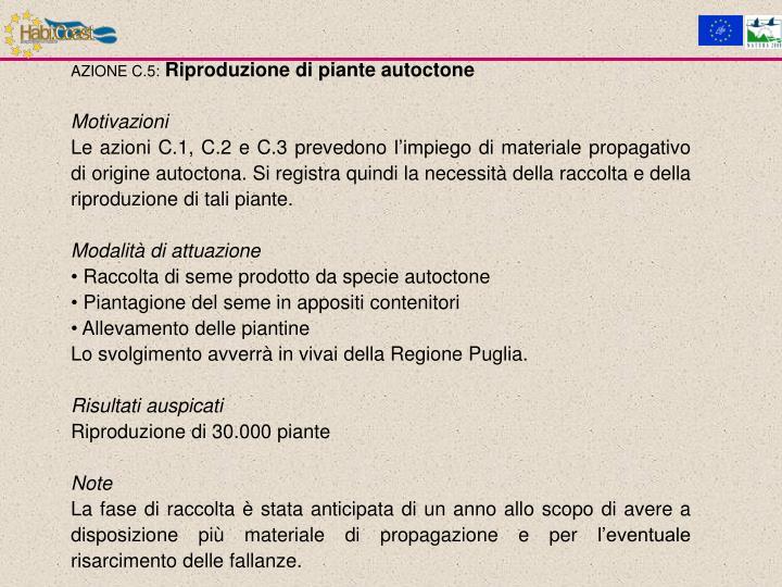 AZIONE C.5: