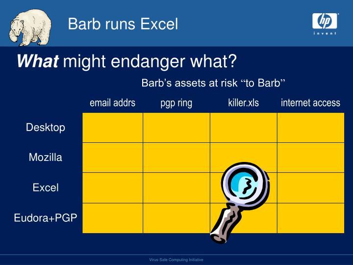 Barb runs Excel