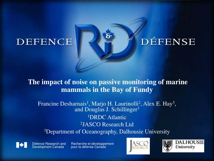 The impact of noise on passive monitoring of marine mammals in the bay of fundy