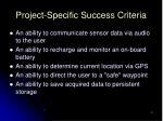 project specific success criteria